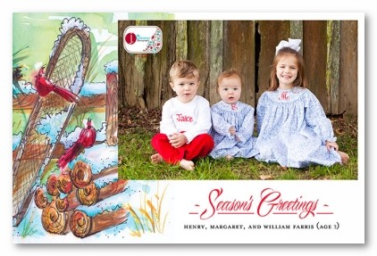 Frosty Feathered Friends Personalized Holiday Photo Cards