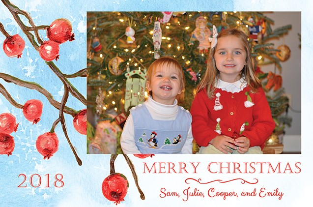Snow Berries Personalized Holiday Photo Cards